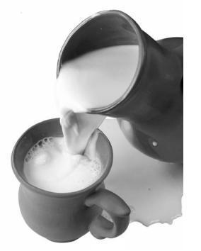 Роль молока в лечебно-профилактическом питании